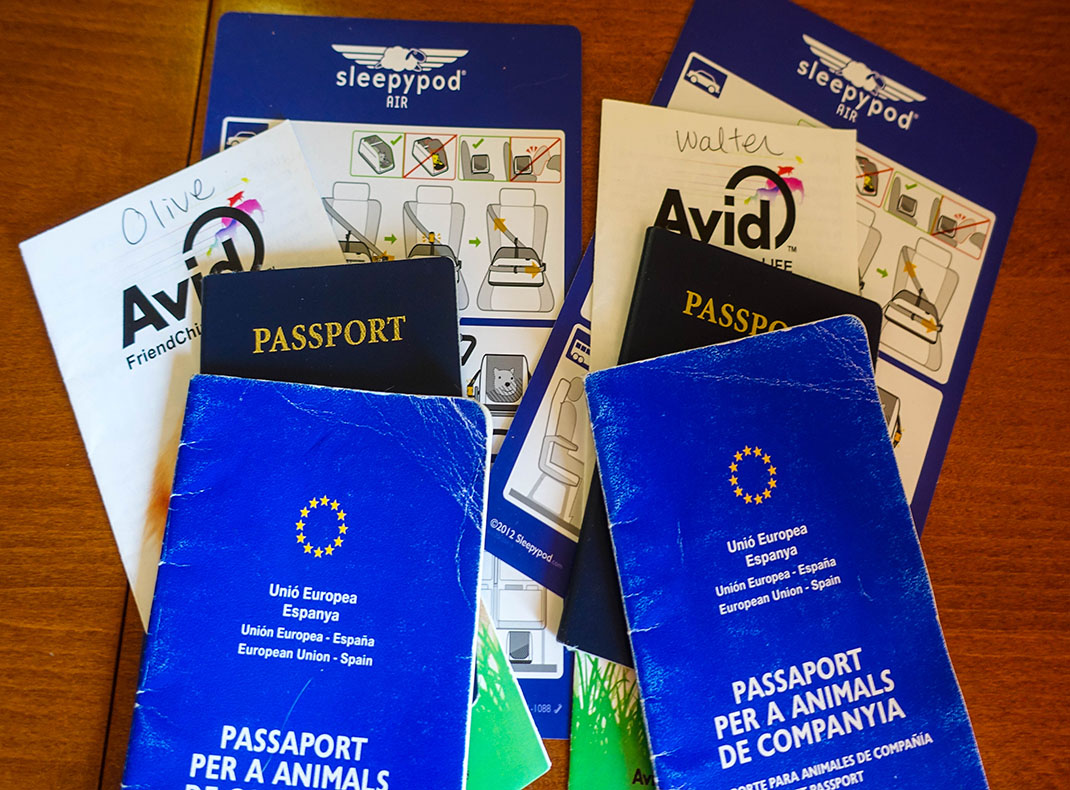 Cats and dogs need a pet passport to cross countries