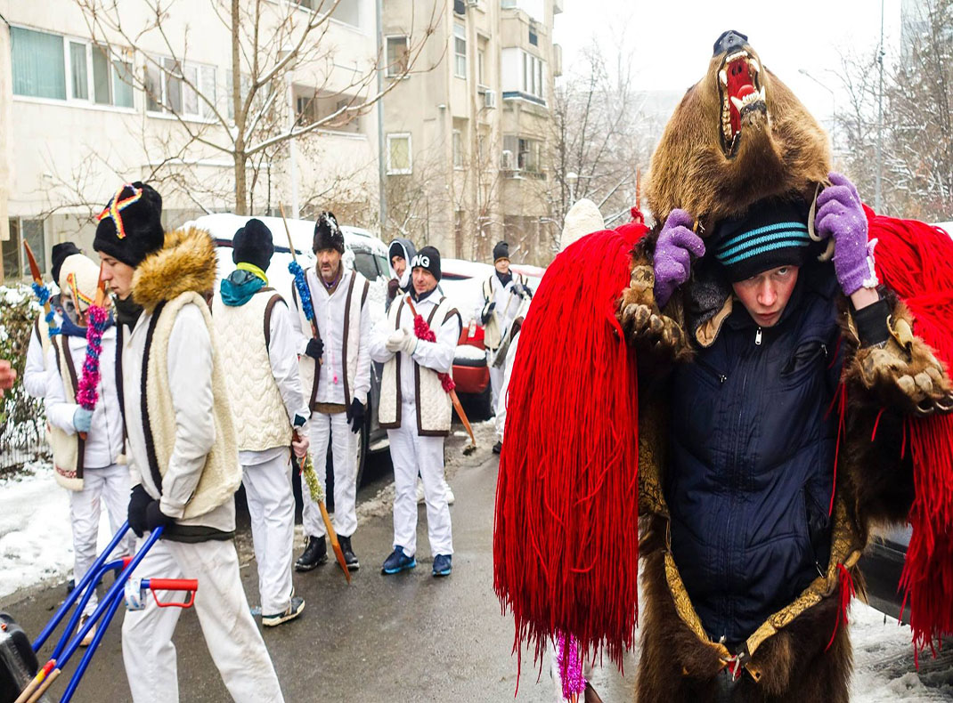 The-bears-dance-in-Bucharest-Romania